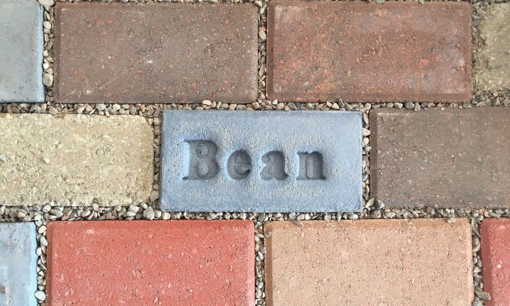 Bean stamped paver included in paver pathway